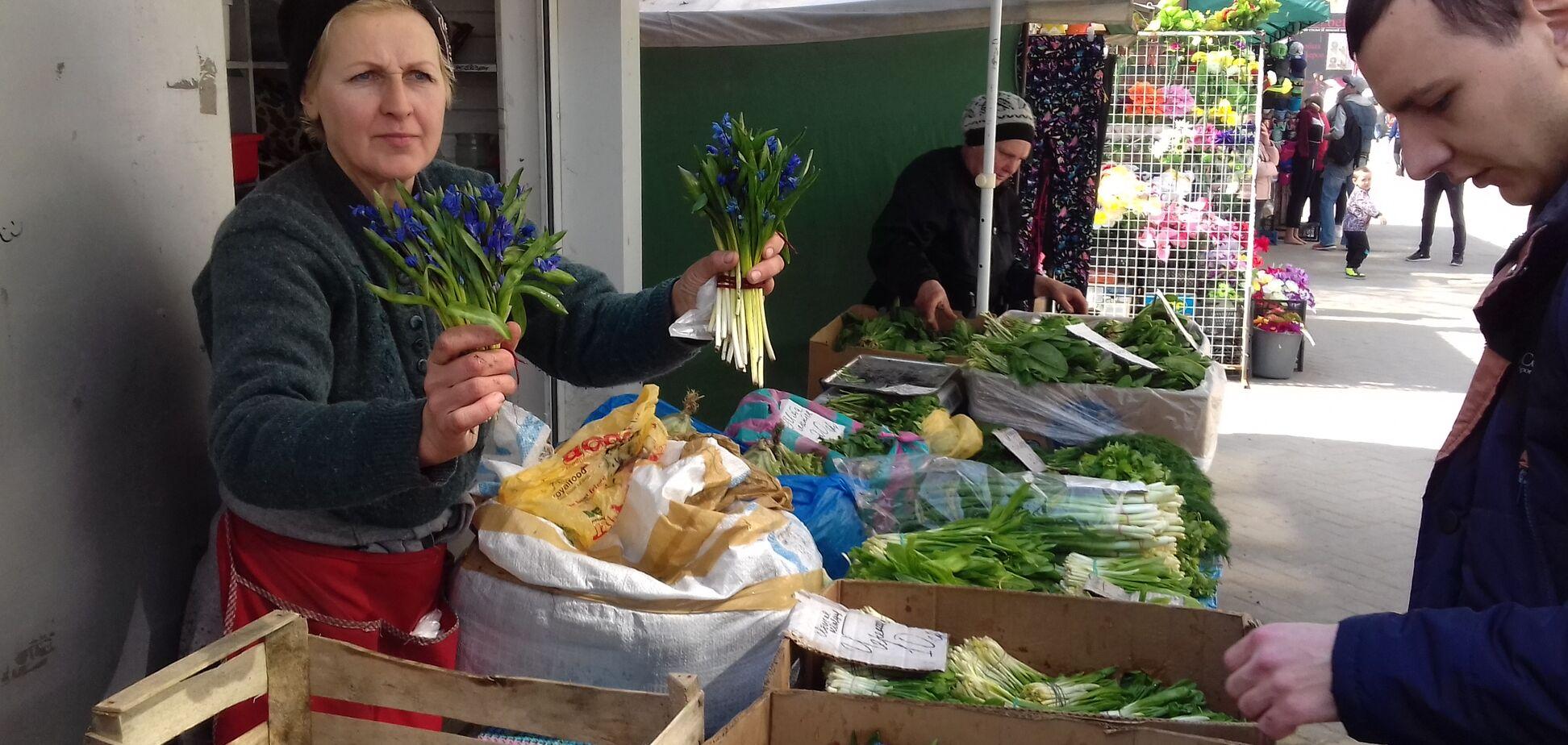 В Харькове устроили облаву на торговцев редкими растениями: яркий фоторепортаж