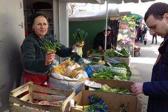 У Харкові влаштували облаву на торговців рідкісними рослинами: ясркавий фоторепортаж