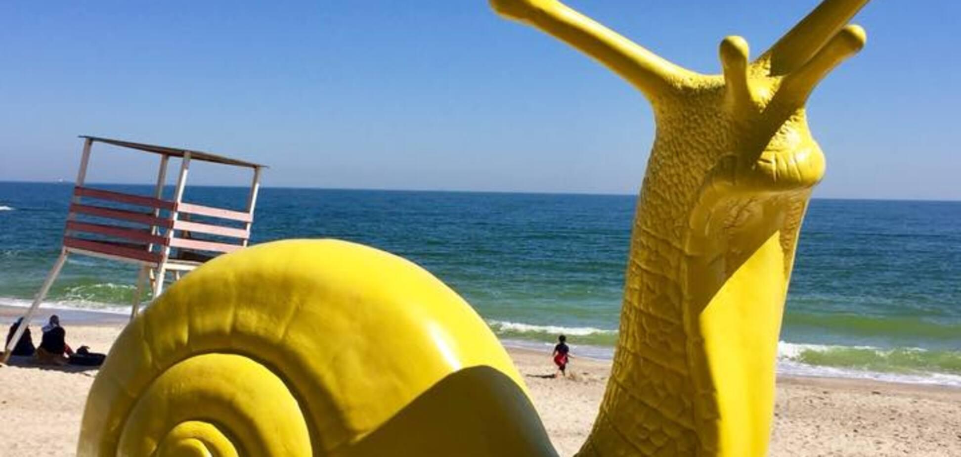 В Одессе возле моря появились гигантские улитки