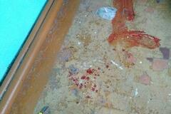 Все в крови: появились первые фото после резни в российской школе