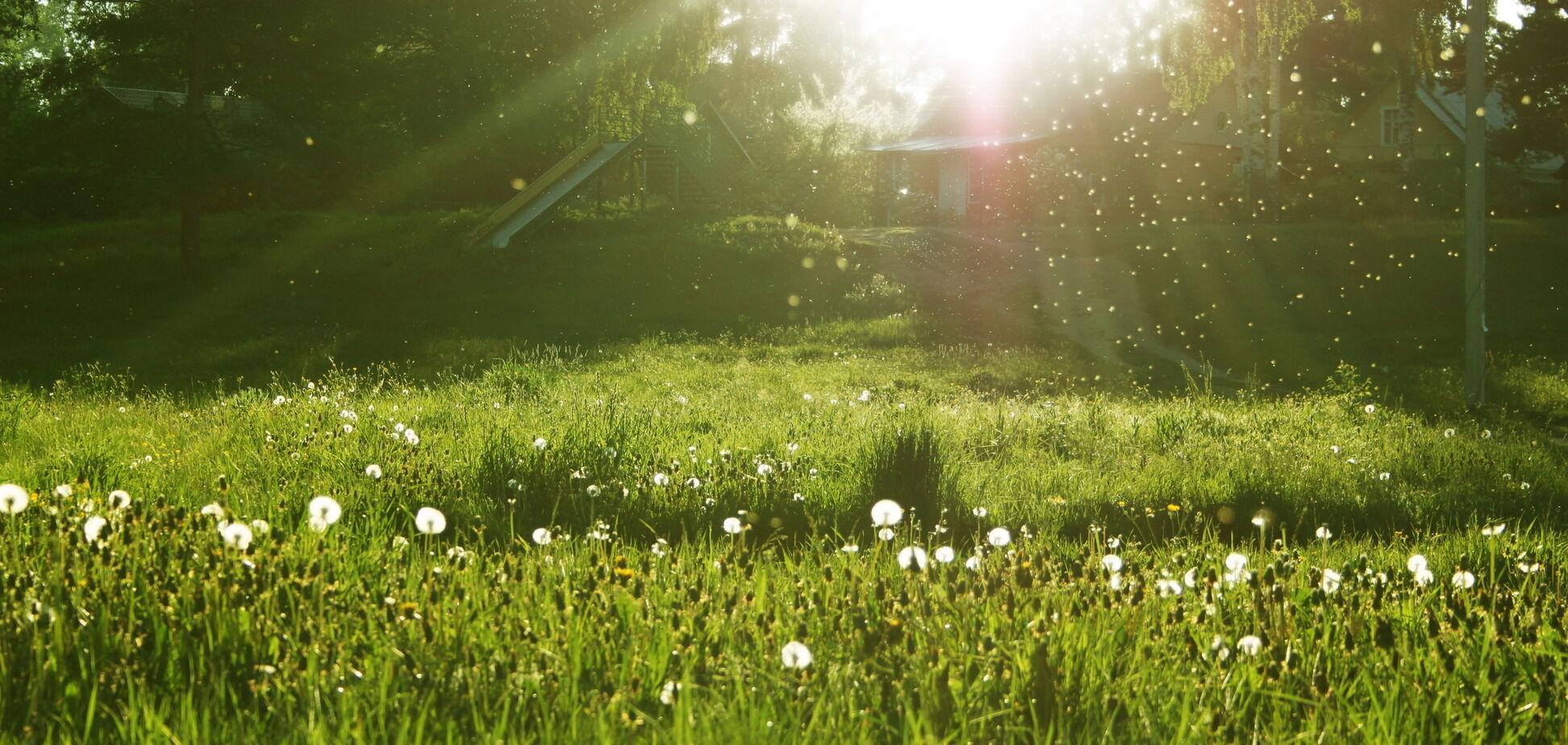 Майские праздники 2018: появился прогноз погоды
