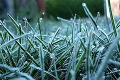 В Україну йдуть заморозки: синоптик дав прогноз
