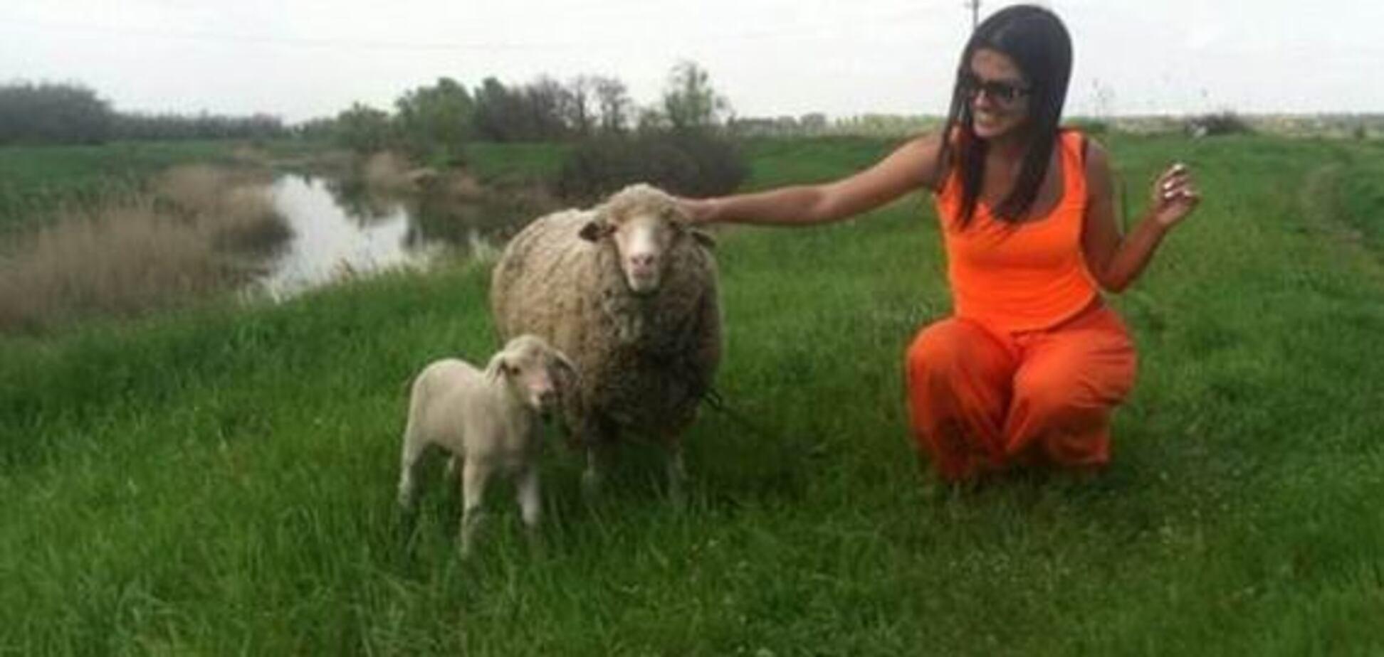 Головний міф про вегетаріанство