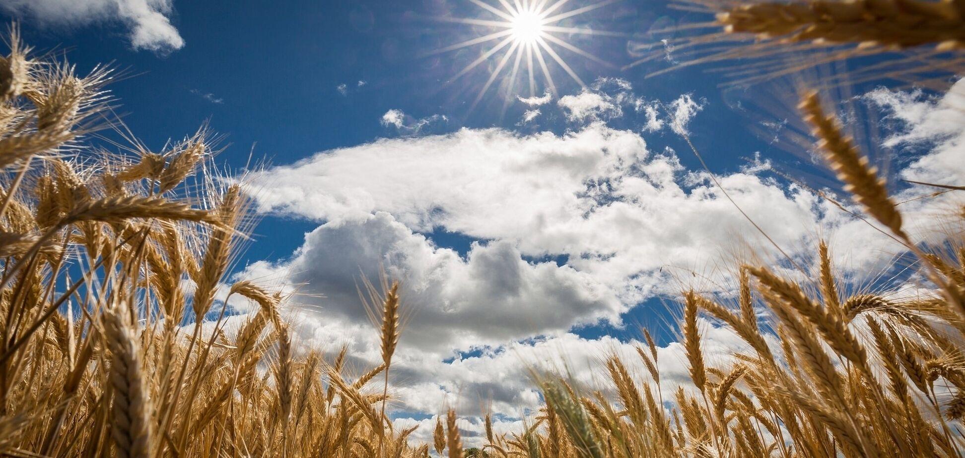 'Не будет жарким': народный синоптик дал прогноз на лето
