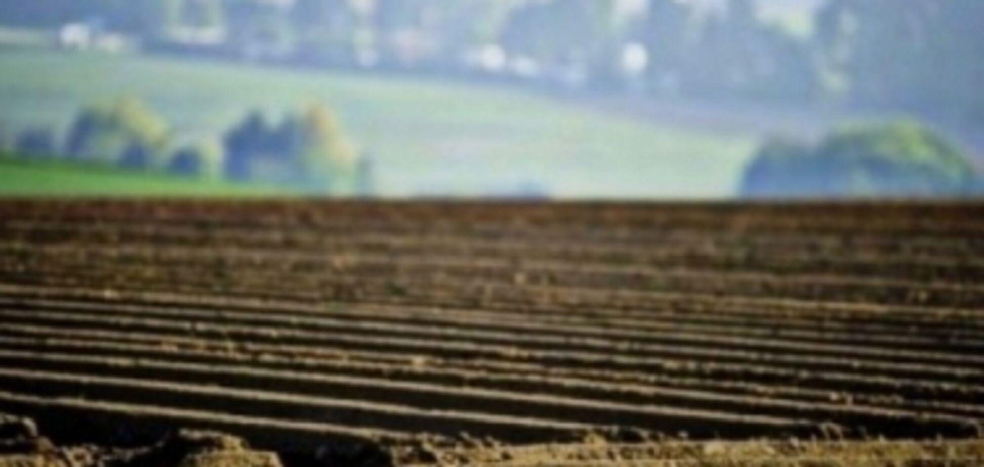 Кабмін передав землі постійного користування у власність фермерів - Мартинюк