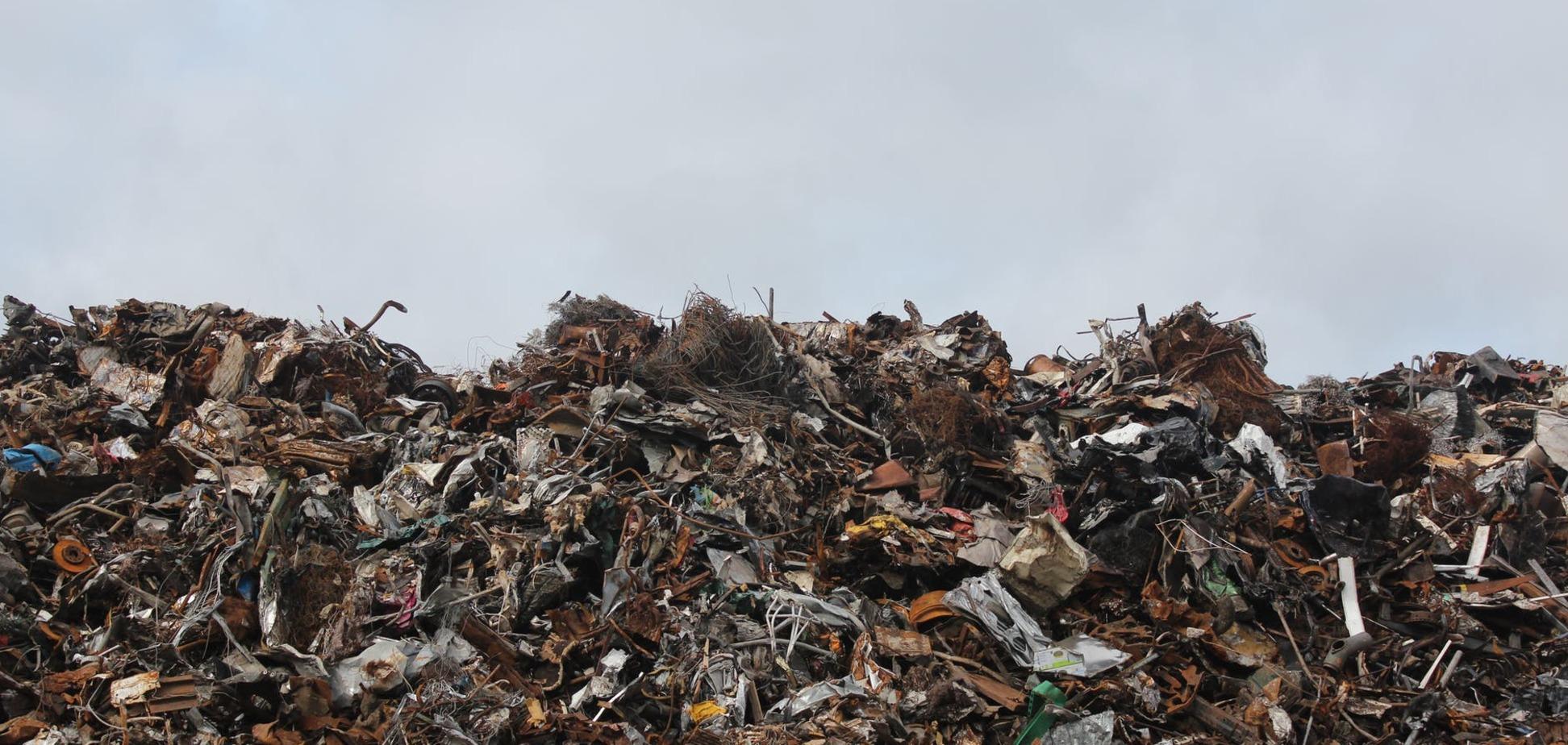 Місто на межі катастрофи: на Львівщині жителів завалило сміттям