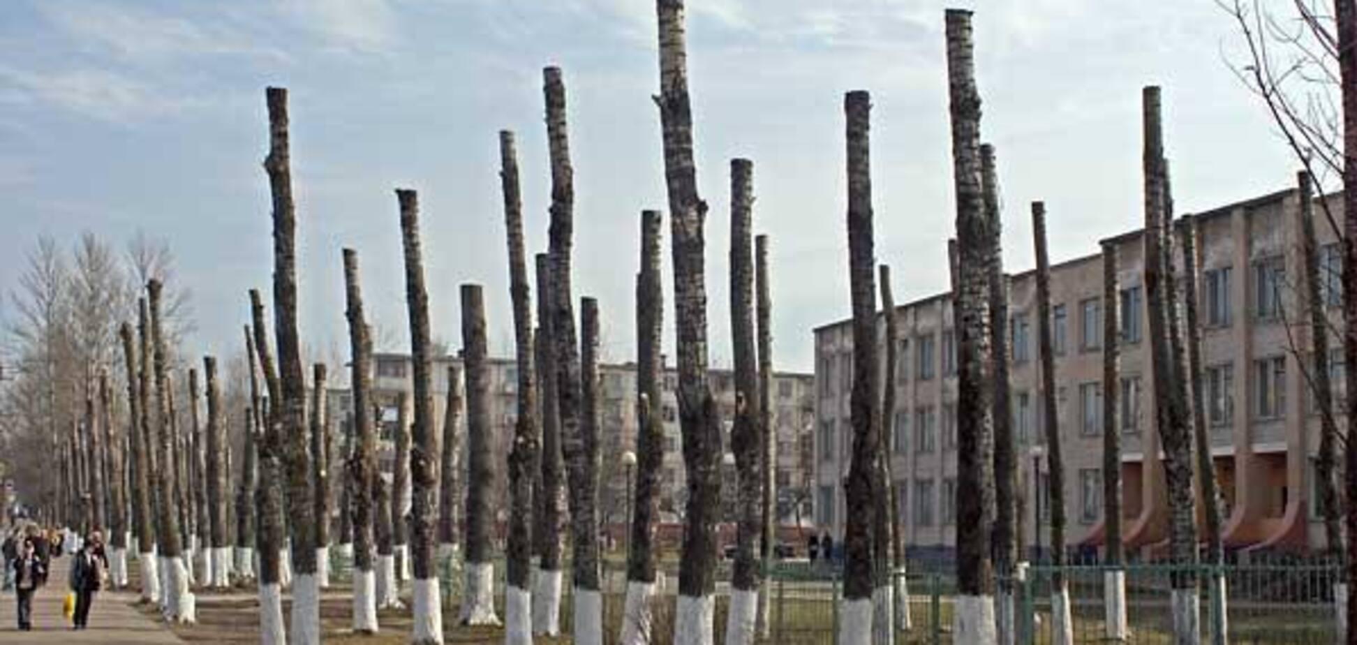 Киевлян возмутил беспредел коммунальщиков в центре столицы