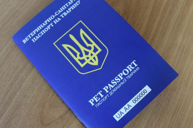 Паспорт домашнего животного