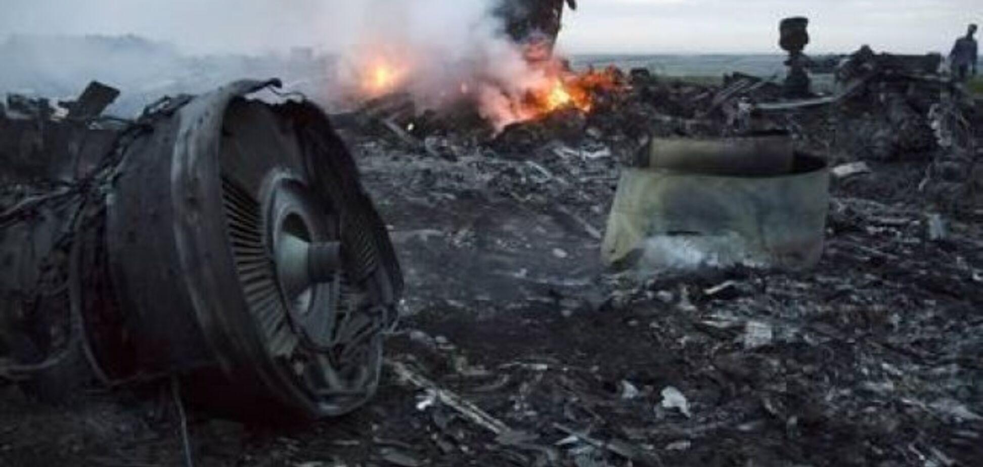 Місце катастрофи МН17 на Донбасі