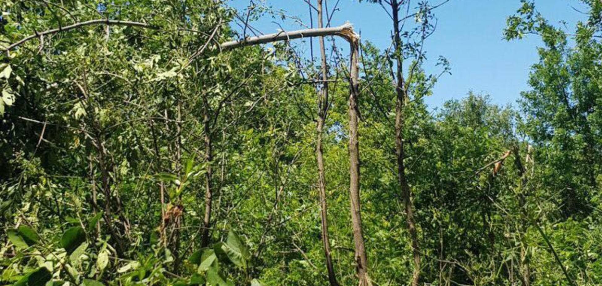 Загибель дівчинки на Донбасі: в ГПУ довели провину 'ДНР'