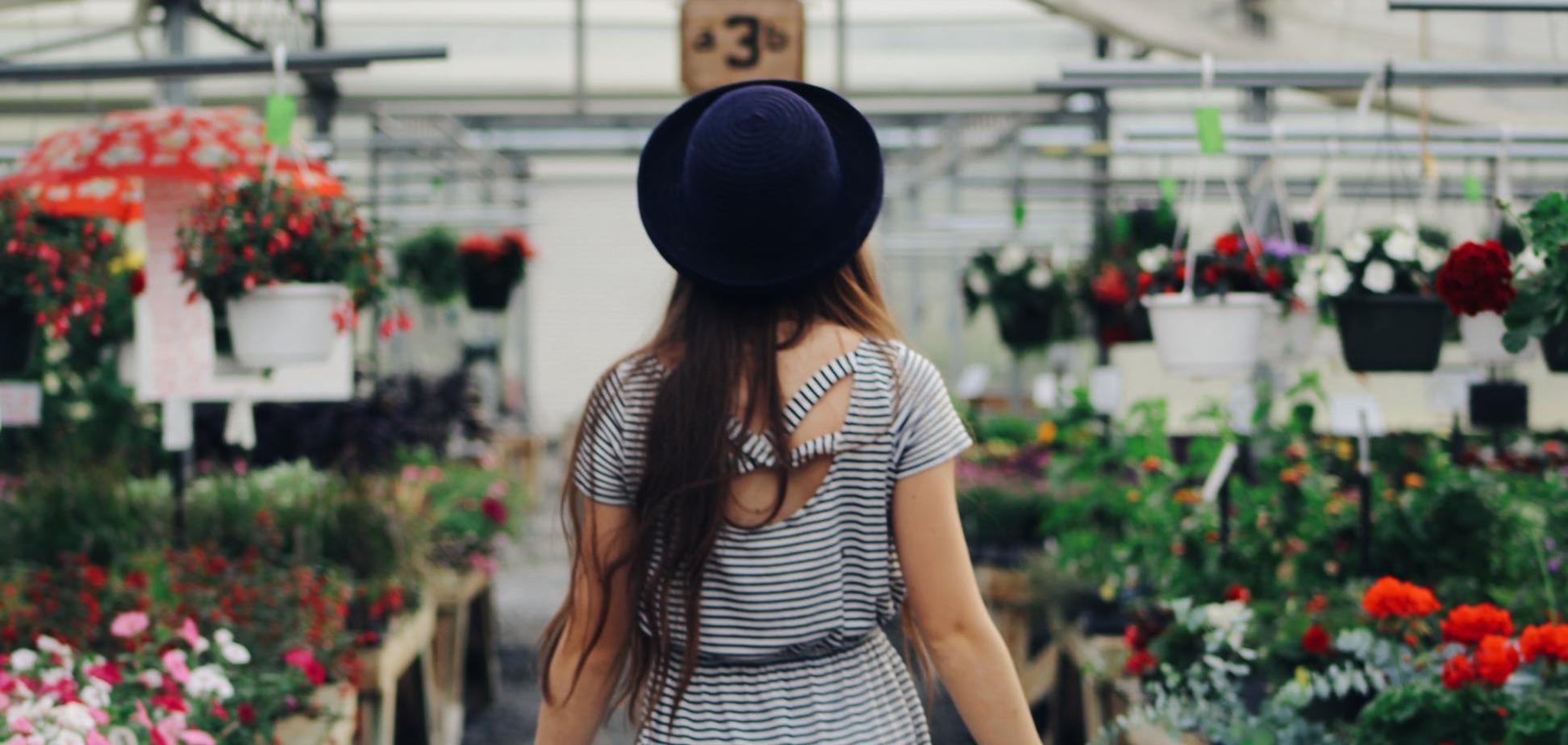 Хижі рослини вдома: секрети експерта