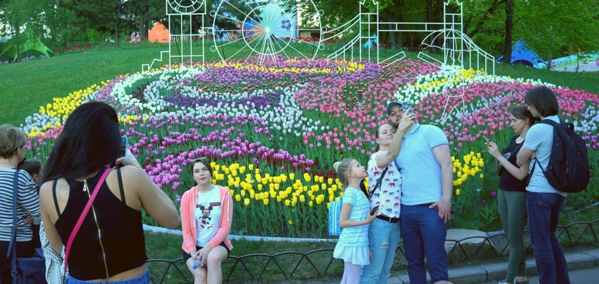 Вход на выставку тюльпанов в Киеве сделали бесплатным
