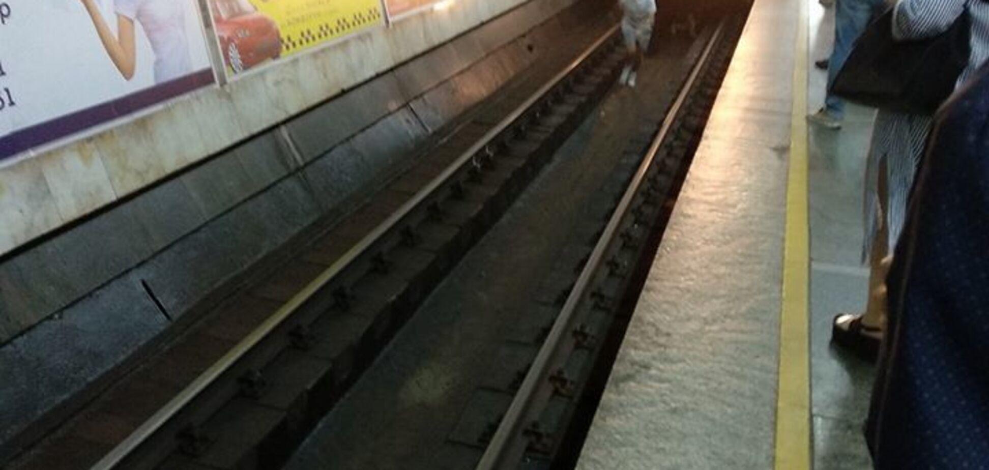 Діти стрибнули під потяг: з'явилося відео НП в київському метро