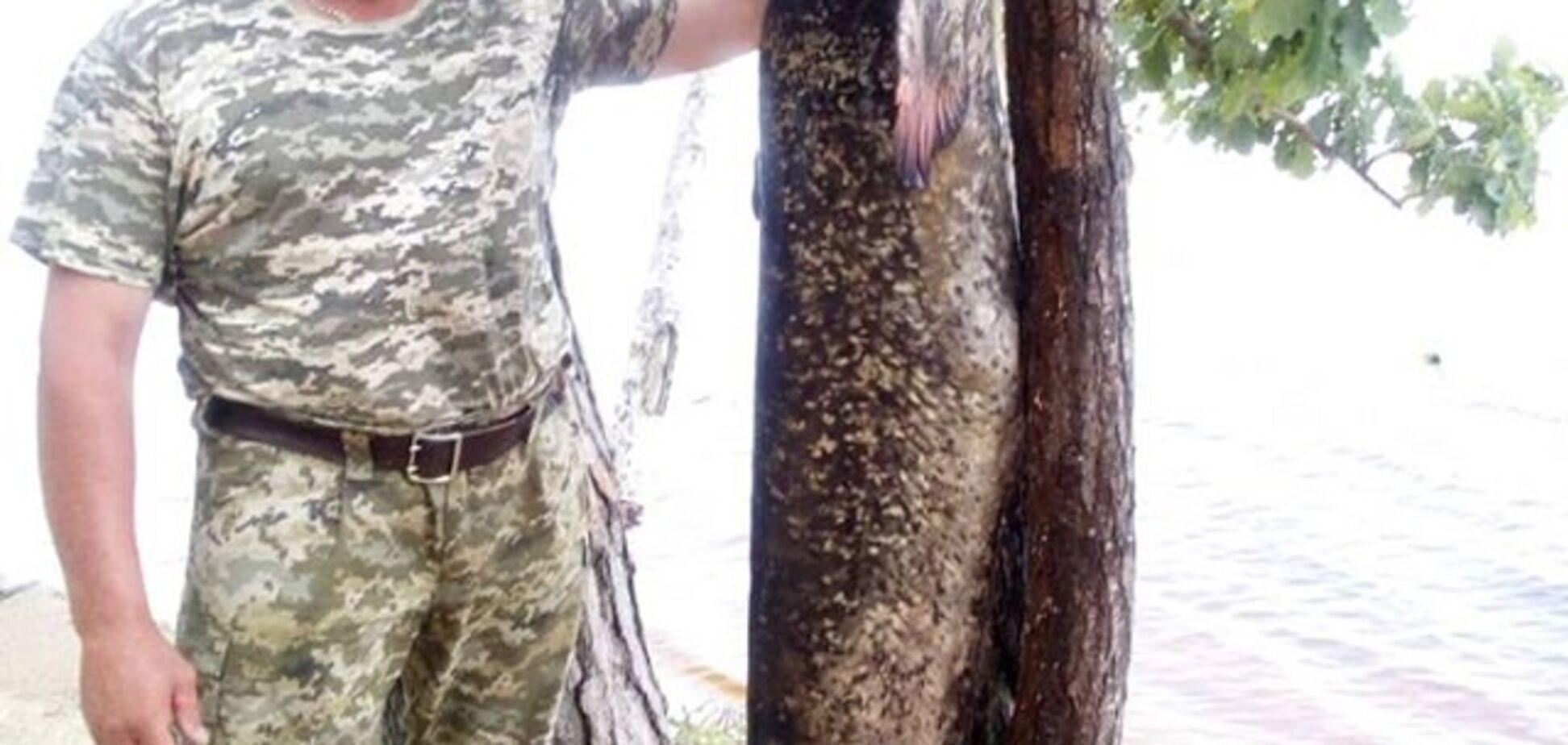 Український рибалка зловив сома-велетня: з'явилися фото диво-риби