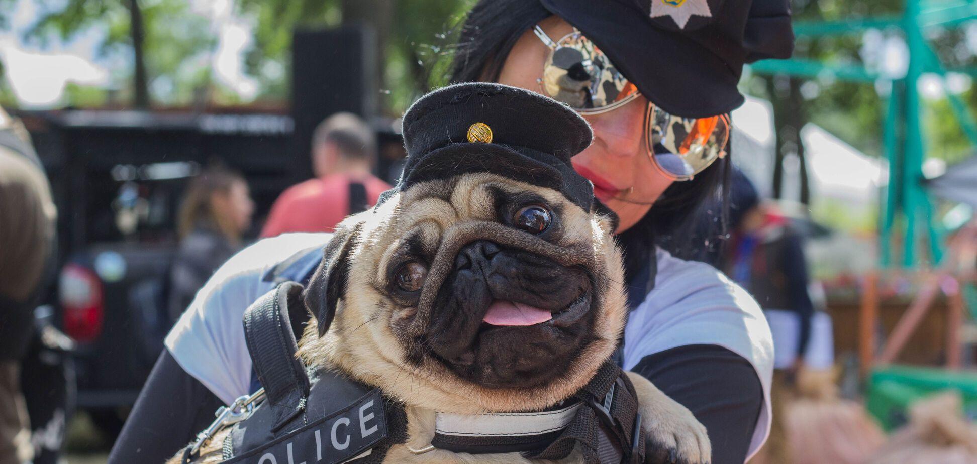 Як кияни бігали з собаками: яскравий фоторепортаж