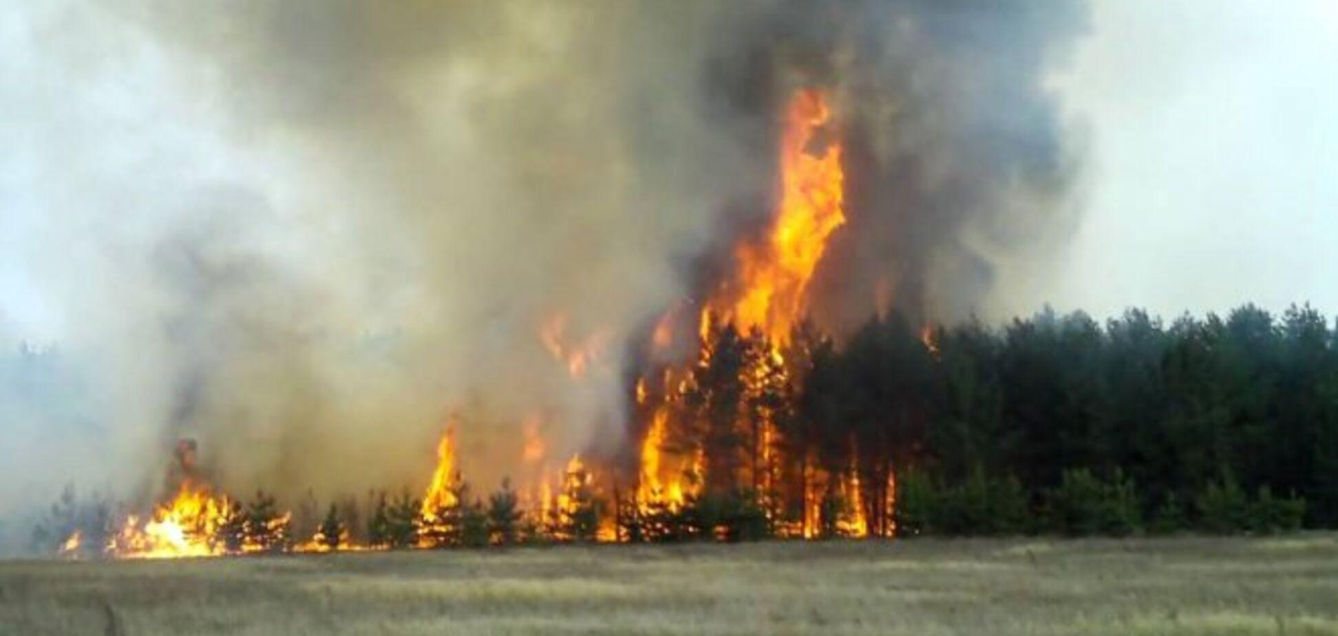 У Чорнобилі спалахнула пожежа біля небезпечної ділянки