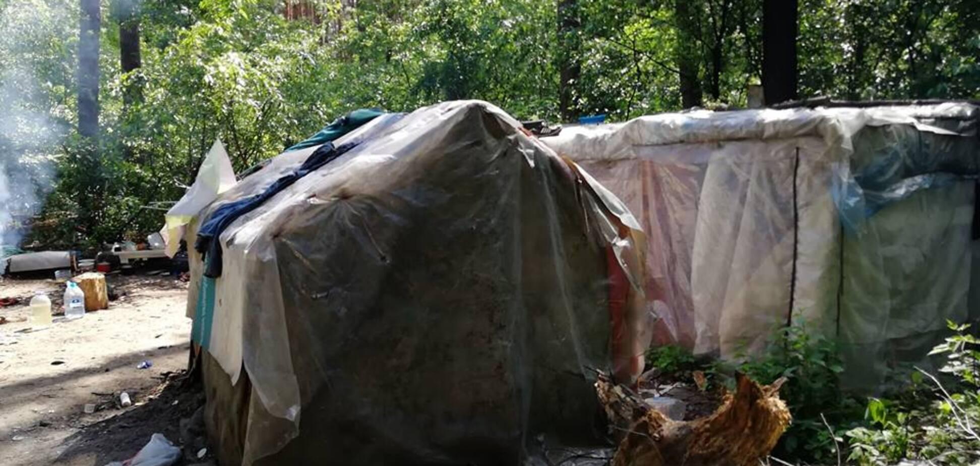'Бросались камнями и кирпичами': в Киеве табор ромов захватил национальный парк