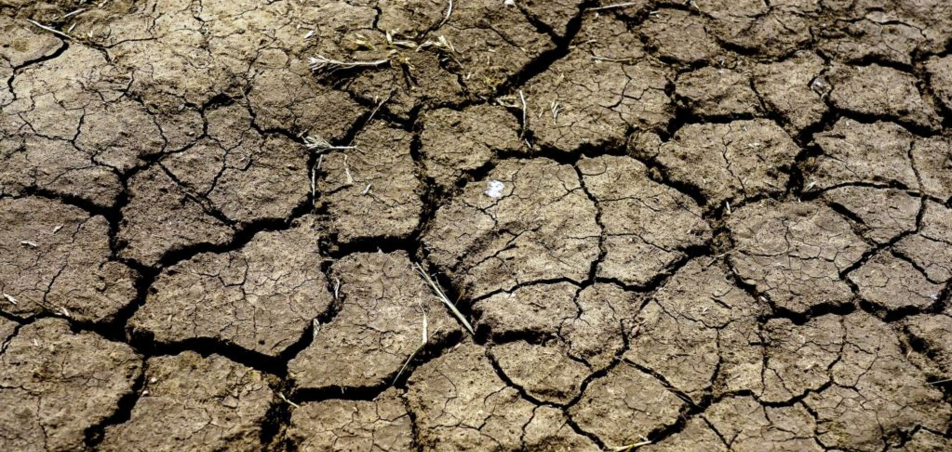 Засуха в Криму: в мережі показали, на що Росія перетворила півострів