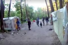 Разгром табора в Киеве: опубликовано видео нападения ромов на эколога в Голосеевском парке