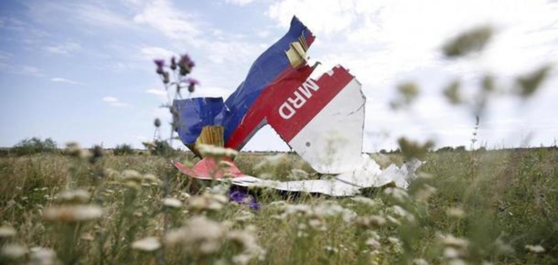 Катастрофа МН17 спасла Украину: подмечен неожиданный нюанс