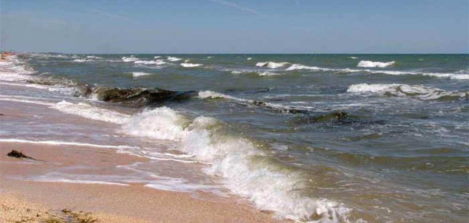 'Вычерпайте море': в России испугались минирования Азова Украиной