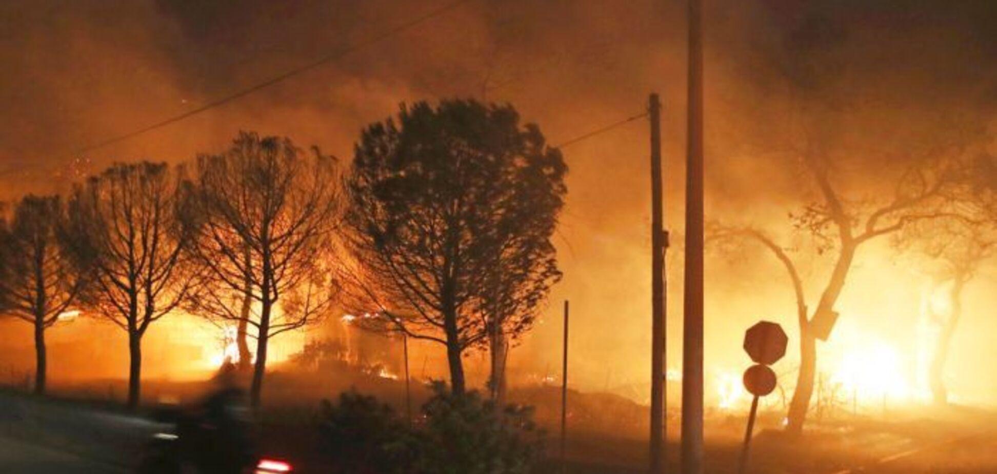 Масштабні лісові пожежі охопили Грецію: 50 загиблих, понад 150 поранених