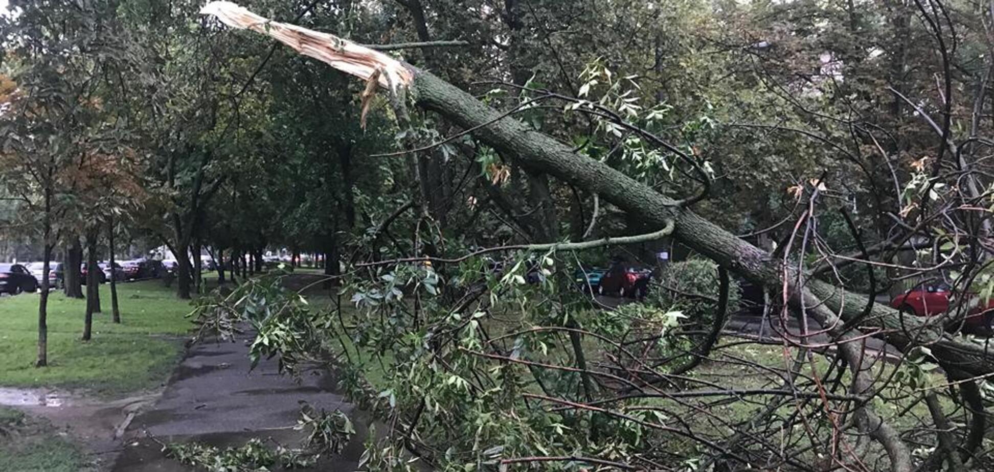 Київ накрив потужний ураган: фото і відео погодного 'армагеддону'
