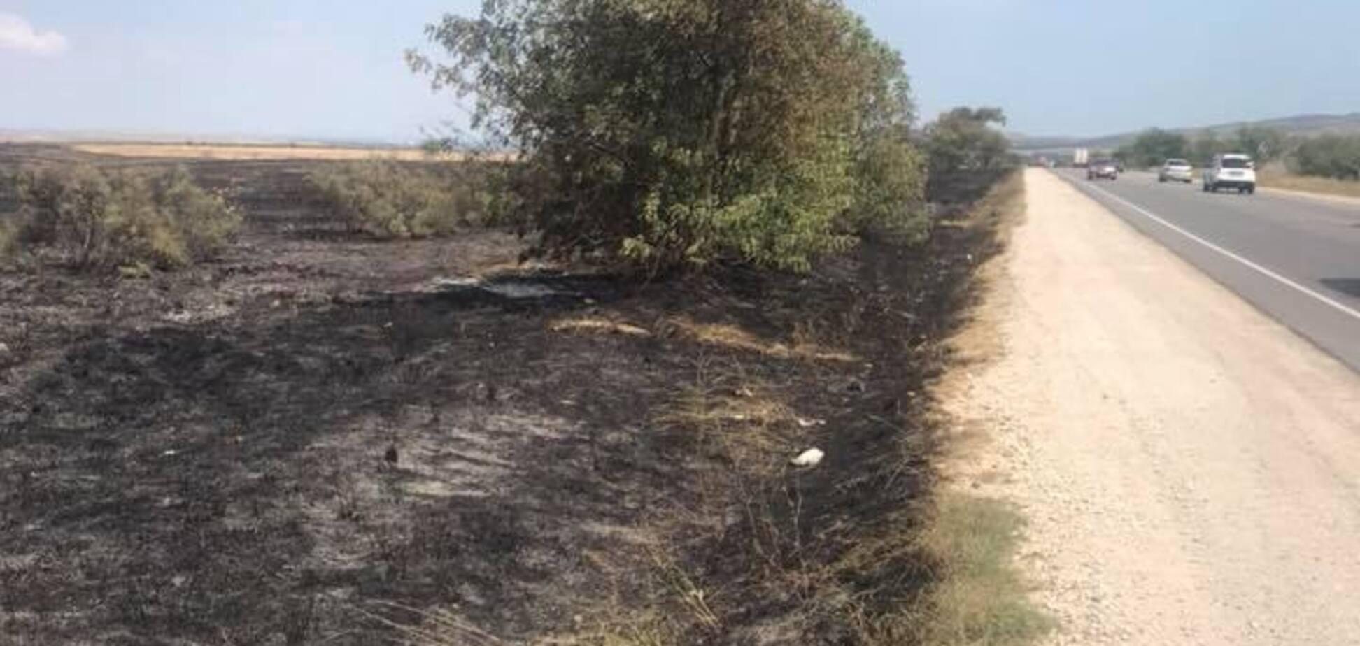 Идет стена огня: появились фото выжженого Крыма