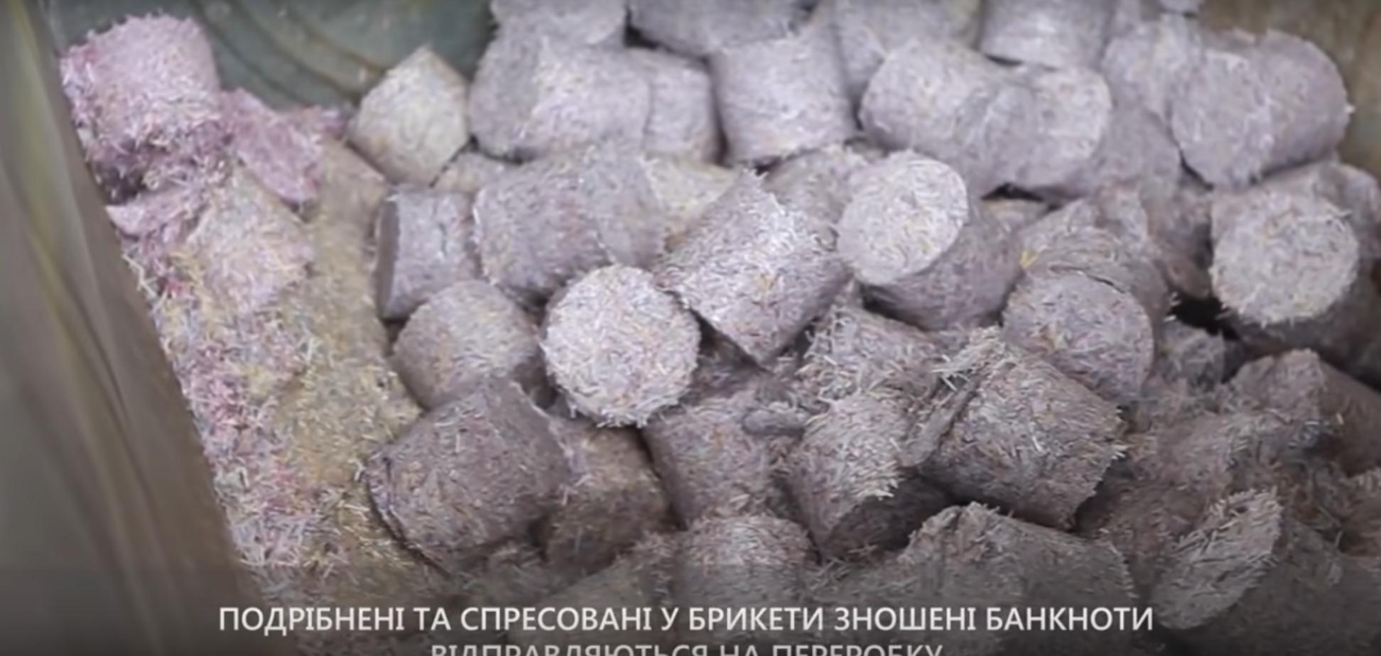 Під Дніпром знайшли порізані мільйони гривень: стало відомо, що сталося