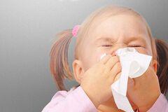 Накопительная аллергия: миф или реальность?