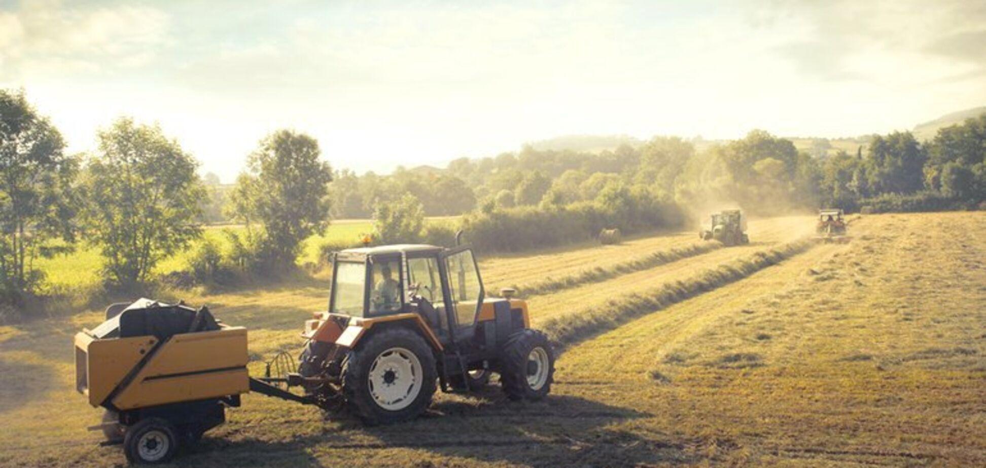 В Україні фермерів прирівняли до підприємців: що відомо