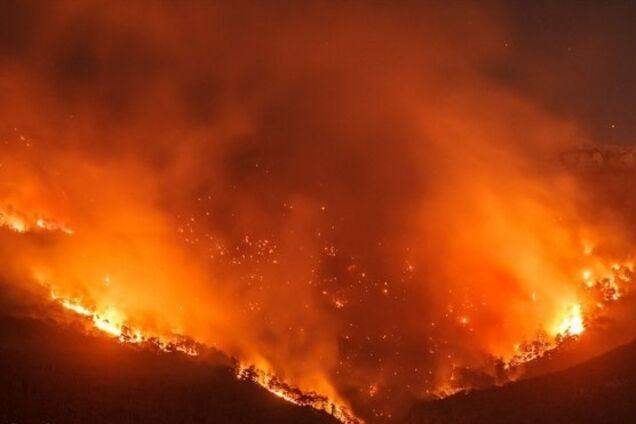 Апокалипсис в Ялте: масштабный пожар сняли с высоты птичьего полета
