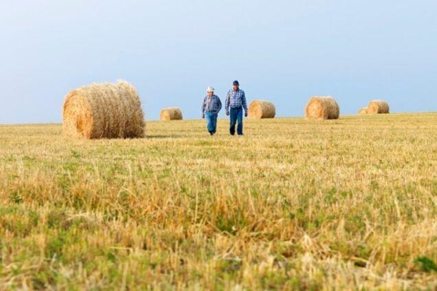 Украинским фермерам упростили налоговую волокиту