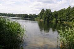 Самое чистое озеро Киева