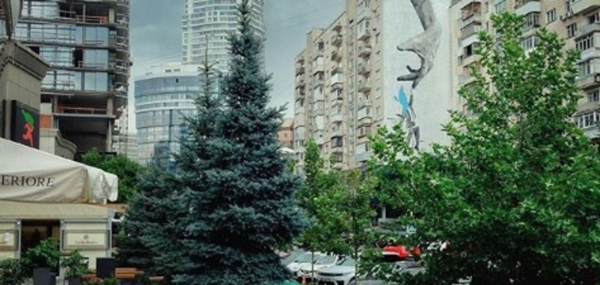 'Лето пакует чемоданы': в сети появилось сочное фото Киева в августе