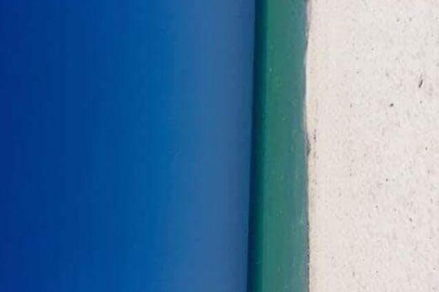 Пляж или дверь? Сеть взорвала новая оптическая иллюзия