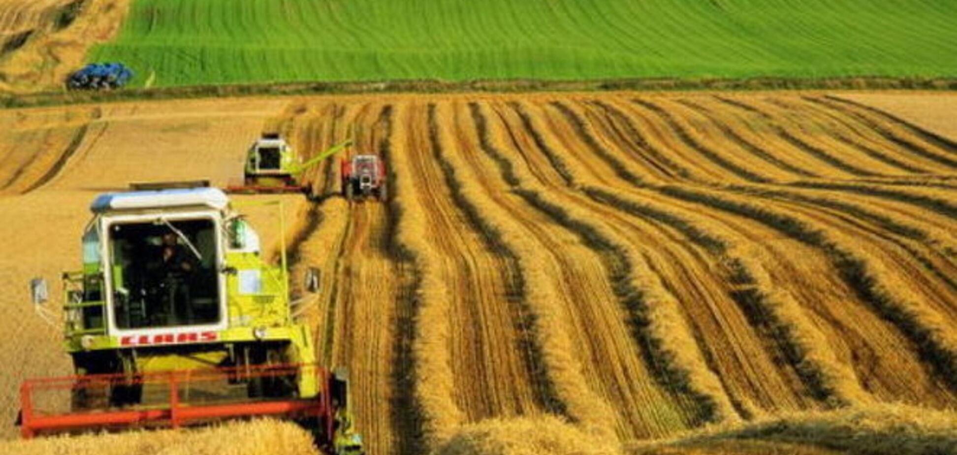 Крупный украинский агрохолдинг продали компании из Саудовской Аравии