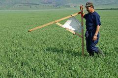 На ринку землі України запровадили важливе нововведення: що треба знати