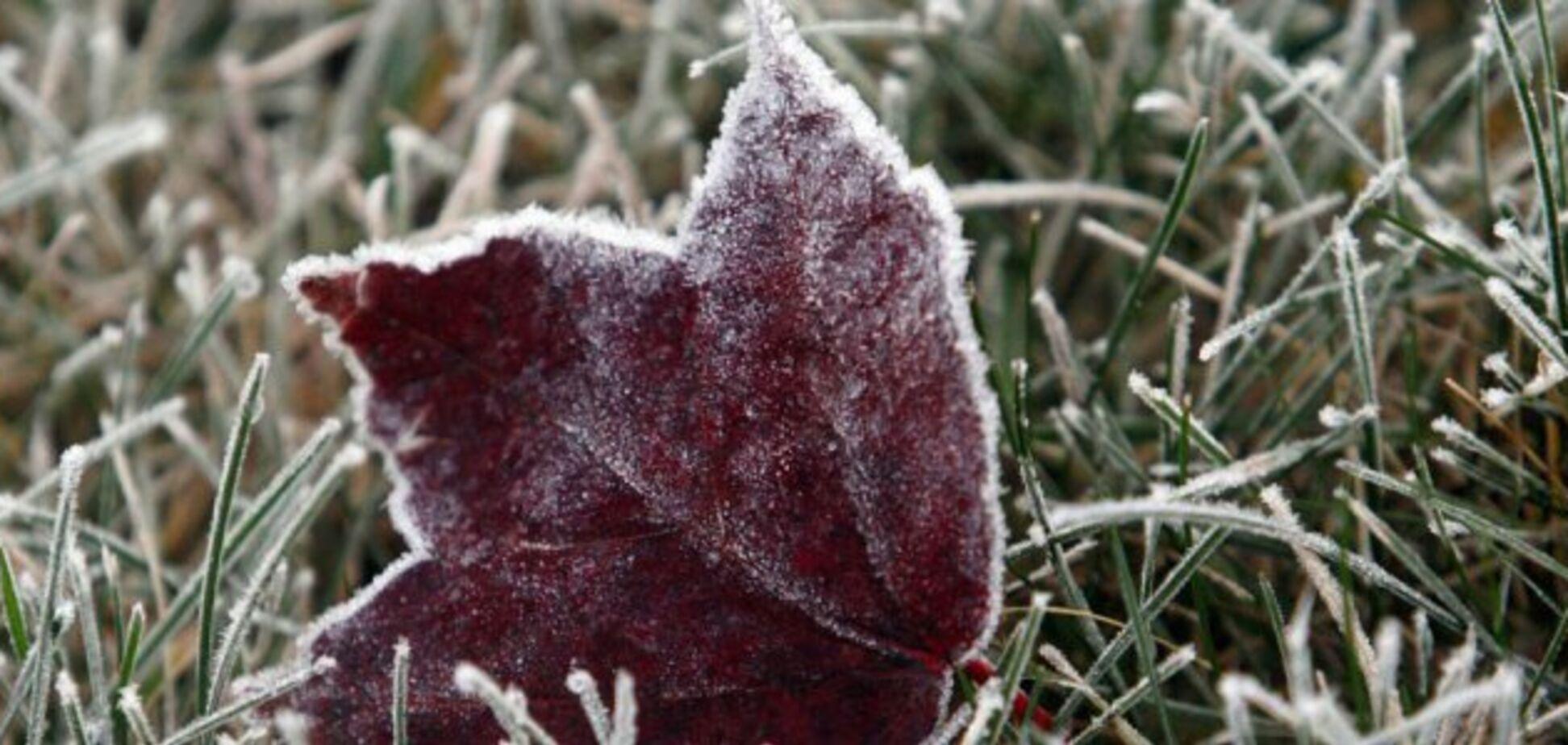 Бурі та заморозки: синоптик дав прогноз на жовтень в Україні