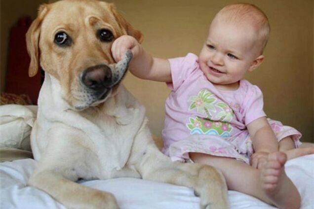 Польза или вред? Супрун рассказала о влиянии животных на здоровье детей