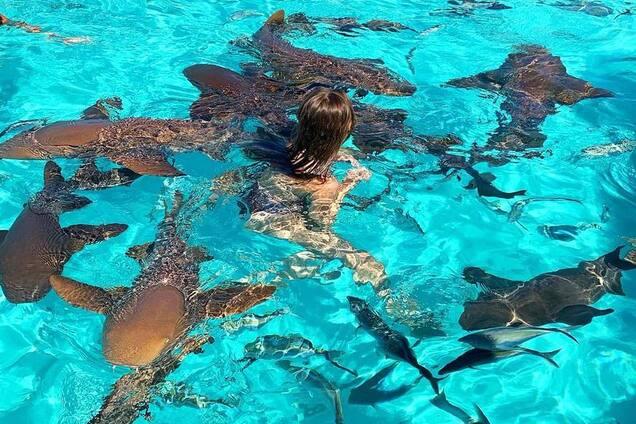 Известную российскую певицу покусали акулы