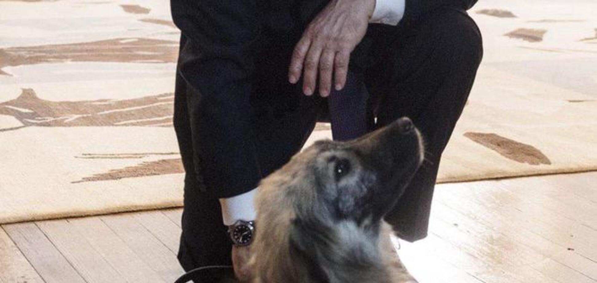 Зовут Паша: президент Сербии сделал Путину неожиданный подарок