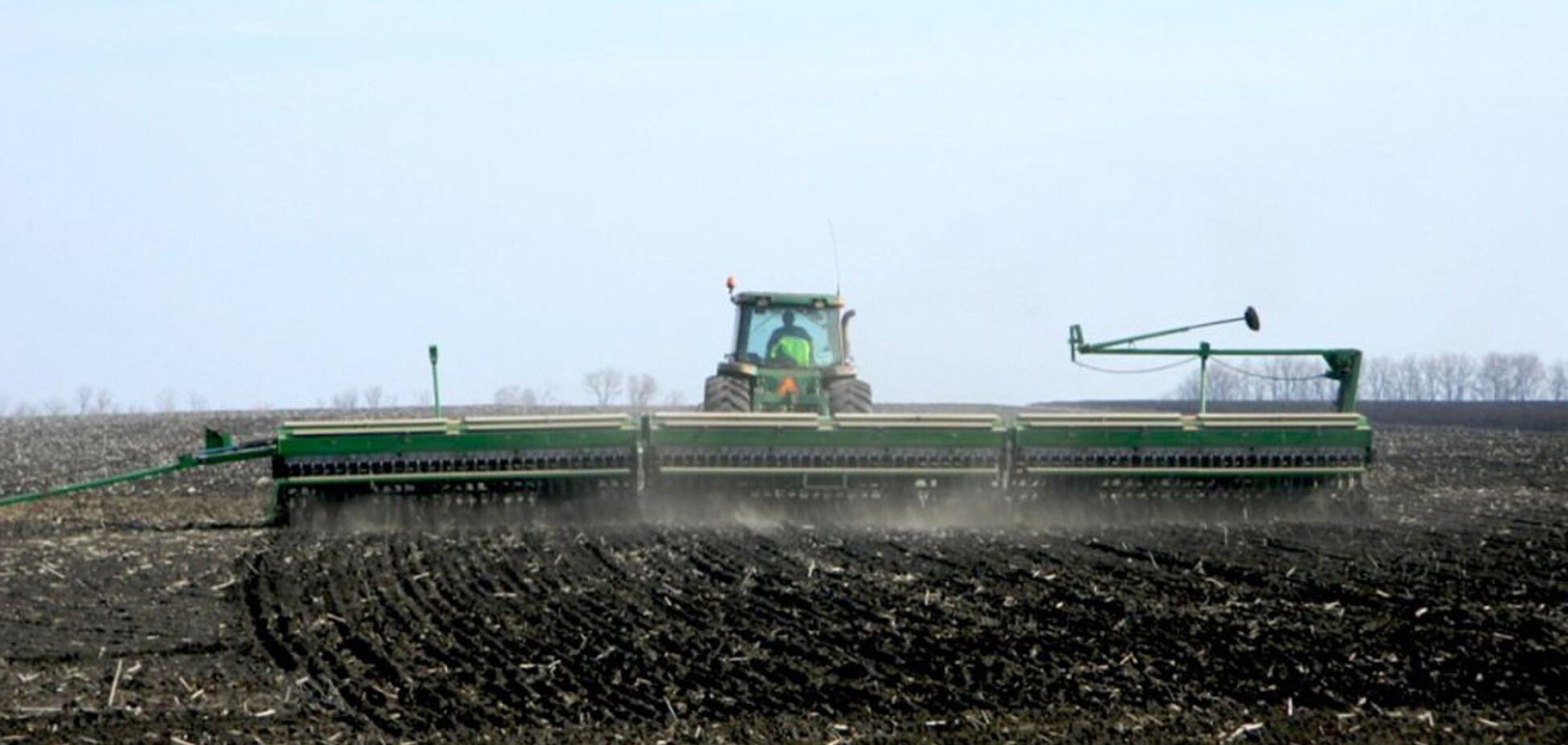 Рынок земли в Украине: эксперт рассказал, сколько должен стоить гектар