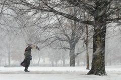 Снежный апокалипсис: в Украине пошли на срочные меры