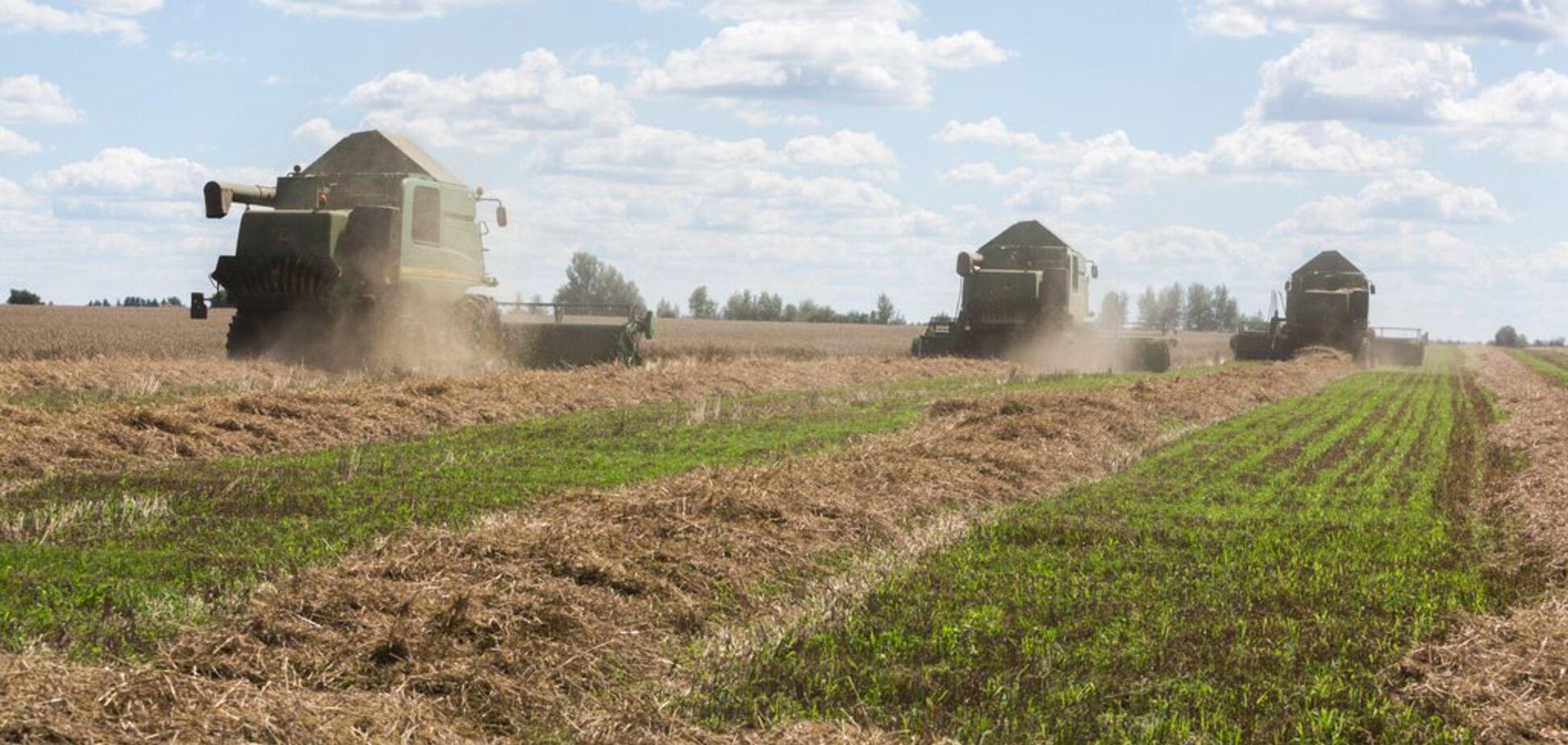 Проблема зневоднення ґрунту на півдні України вирішувана - Укрлендфармінг