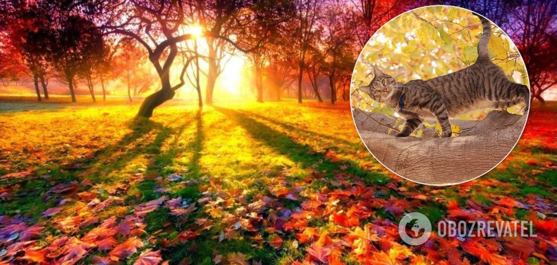 Синоптикиня дала непередбачуваний прогноз на 2 жовтня в Україні