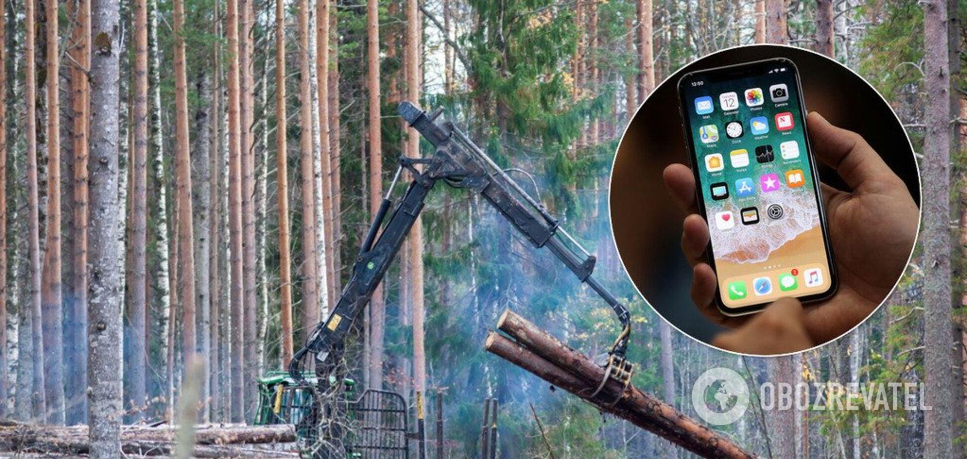 Уряд пропонує прямо з лісу перевіряти вирубку дерев