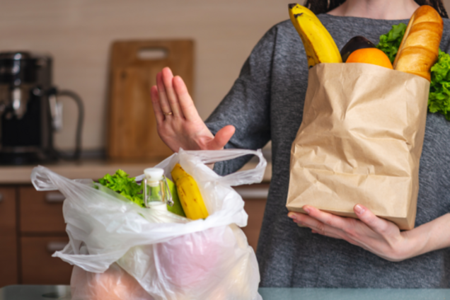 Кабмин поддержал запрет на пакеты из пластика