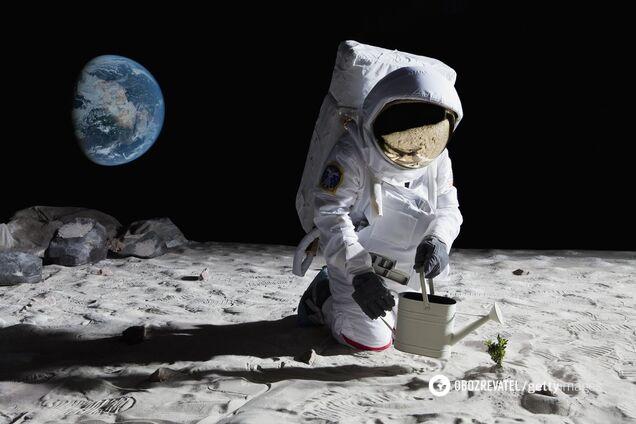 Ученые сделали громкое заявление по жизни на Марсе и Луне