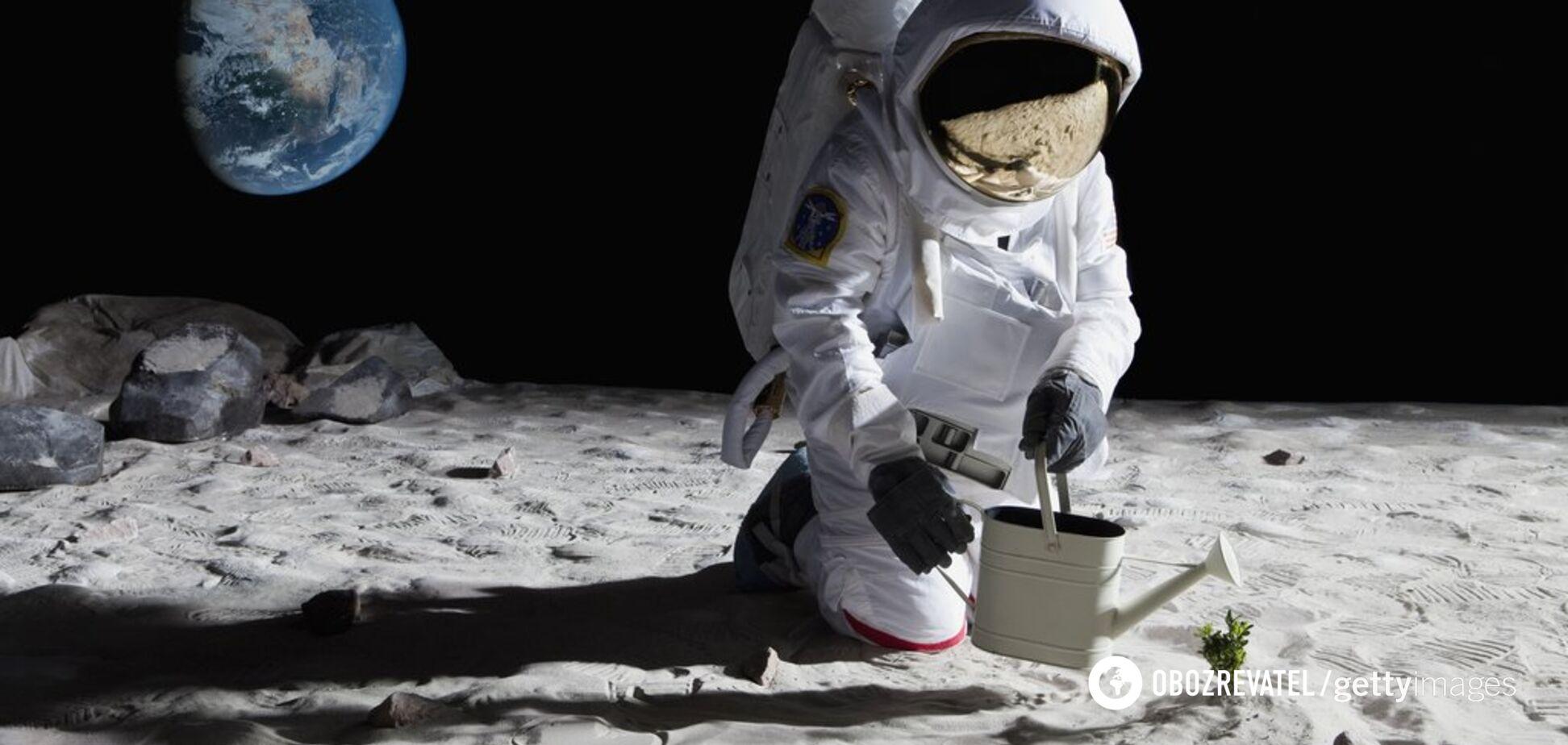 У ґрунтах Місяця й Марса може бути життя: вчені зробили гучну заяву